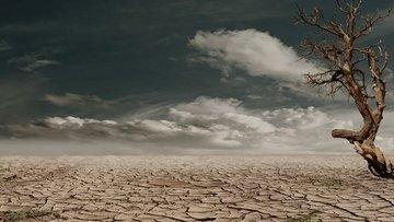 Yüksek gelirli yatırımcılar için en büyük sorun iklim değ...