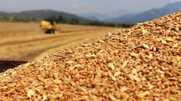 FAO: Küresel gıda ithalat maliyetleri bu yıl rekor kıracak