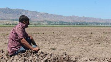 Sigortasız çiftçiye 'kuraklık desteği' Afet Fonundan yapı...