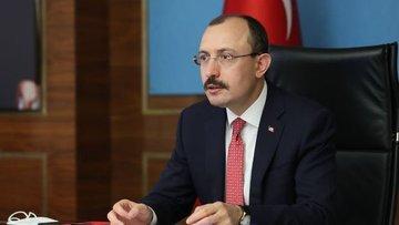 Türkiye'nin Gümrük Birliği diplomasisi turu
