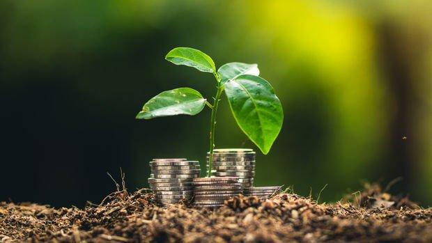 Bir merkez bankası daha yeşilleniyor