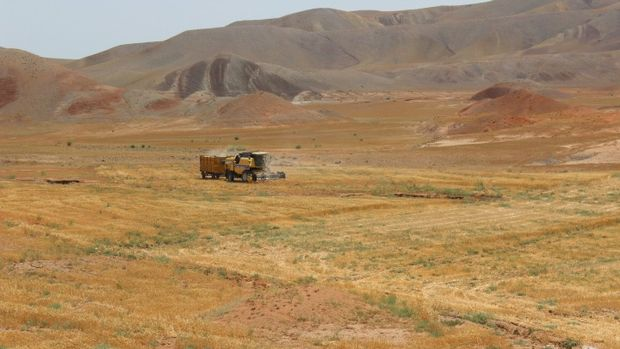 Ekilmeyen binlerce dönüm tarım arazisi yeniden üretime kazandırılıyor