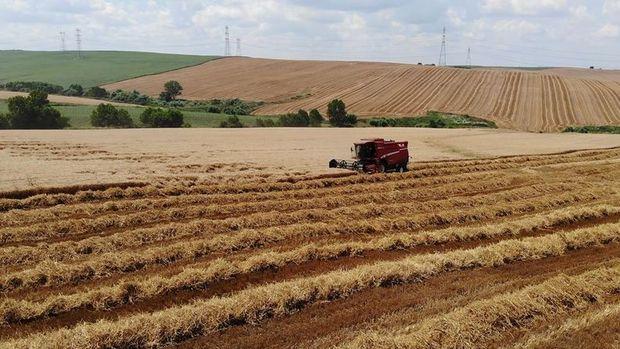 Tarımda üretici enflasyonu Haziran'da yükseldi