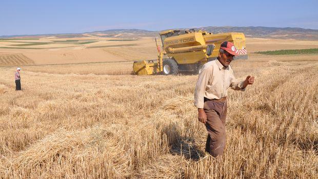 Tarımsal girdi enflasyonu 2,5 yılın zirvesinde
