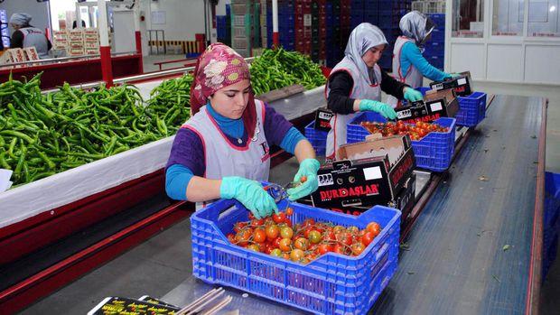 Sebze ve meyvenin miktarı azaldı, fiyatı arttı