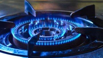UEA'dan Rusya'ya 'daha fazla gaz' çağrısı