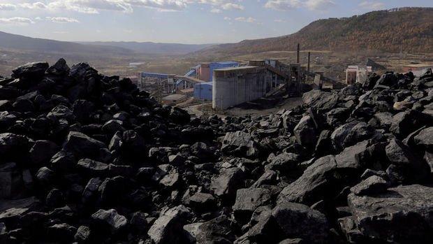 Çin'de kömür fiyatları rekor tazeledi