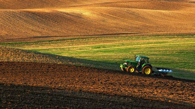 Tarım-ÜFE'de yükseliş sürüyor