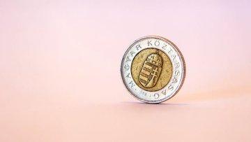 Macaristan faiz artırdı